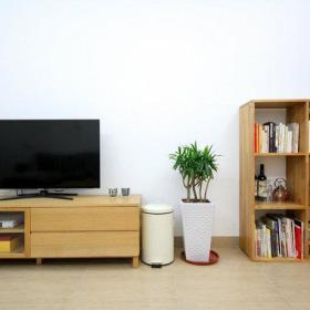 客厅电视柜储物柜效果图