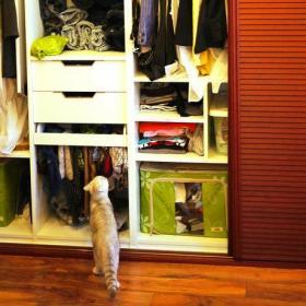 衣柜房间门设计案例展示