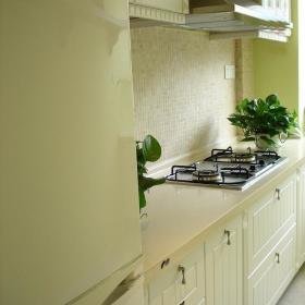 厨房植物设计图