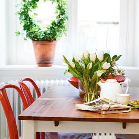 清新植物设计案例