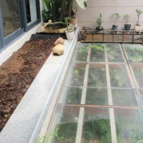 阳台花园植物设计案例