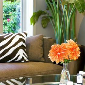 客厅沙发茶几装修效果展示