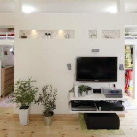 自然温馨植物电视柜柜子马赛克射灯装饰品案例展示