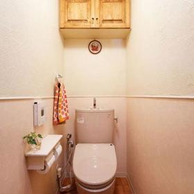 温馨浪漫卫生间柜子马桶案例展示