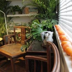 阳台植物设计案例展示
