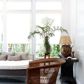 用植物点缀你的家
