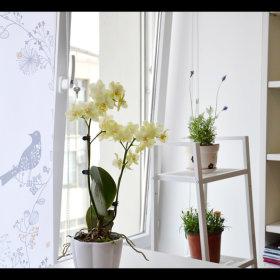 阳台设计案例展示